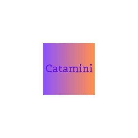 Catimini